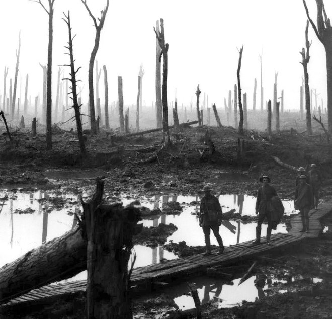 17-chateau-woods-ypres